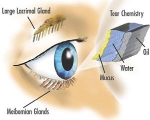 Prikaz sindroma suhega očesa